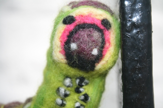 caterpillardetail2