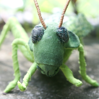 grasshopperdetail3